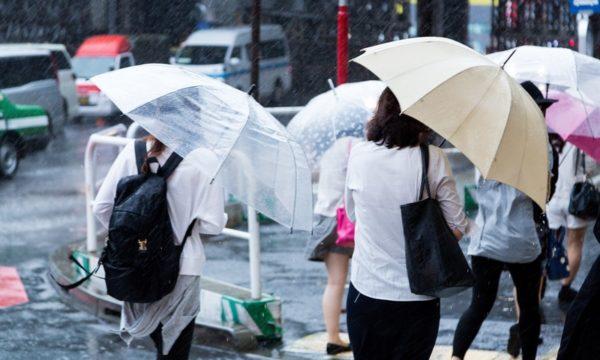 【就活・転職】雨の日の面接や説明会に差していくおすすめの傘は?